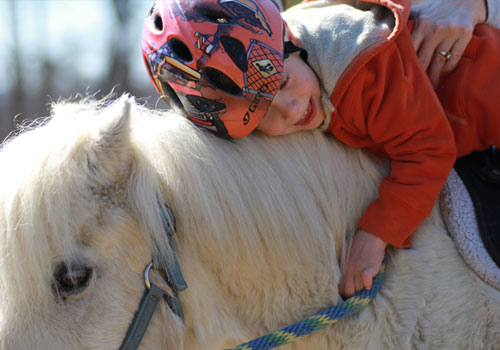 boy hugging horse
